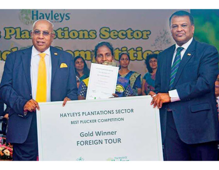 KVPL Gold winner Kamaleshwari of Robgill Estate with Hayleys Chairman and Chief Executive Mohan Pandithage and Hayleys Plantations Managing Director Dr. Roshan Rajadurai