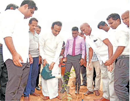 Plantations and Export Agriculture Minister Dr. Ramesh Pathirana watering the tea plant which he planted at the Gangabada Estate premises while State Minister Kanchana Wijesekara and Ministry Secretary Ravindra Hewawitharana look on.