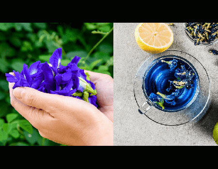All you need is lime to watch Butterfly pea tea create magic