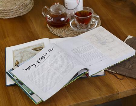 Book Review by Dr Nalini C. Gnanapragasam Sivapalan