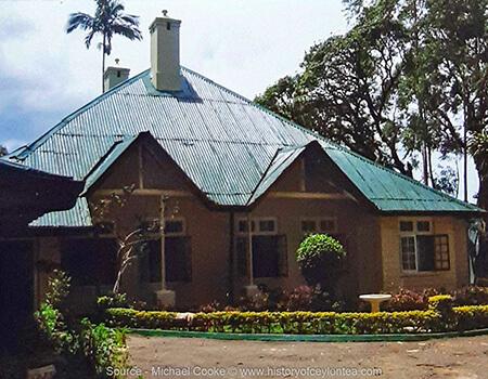 Newton Estate Dickoya