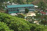 Relationship between Environmental Covariates and Ceylon Tea Cultivation in Sri Lanka