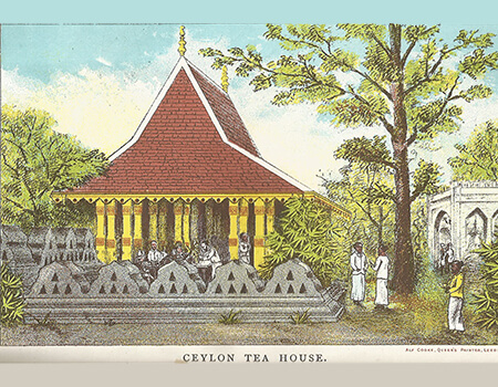 The Tea Planter and His Cook