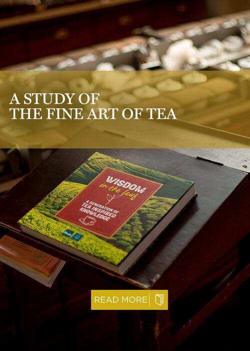 Wisdom in the Leaf book