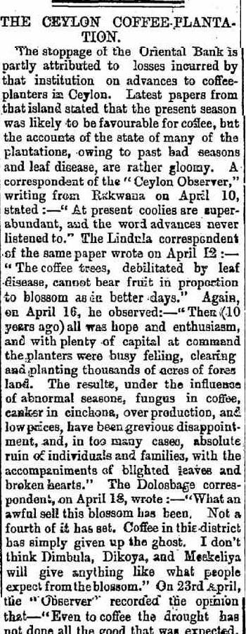 54.The Ceylon Coffee Plantation - Stoppage of the Oriental Bank